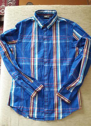 Яркая рубашка lee оригинал 165-170