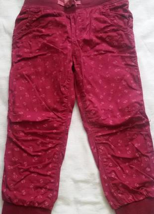 Детские штанижки утепленые h&m (хм) на девочку 2-3 года