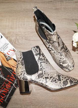 (40р./26см) river island! стильные ботинки-челси в змеиный принт на металлическом каблуке