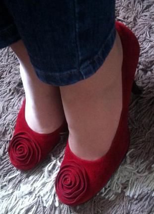 Стильні замшеві модні брендові туфлі vero guoio, 37