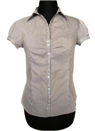 Стильная блузка с коротким рукавом от французского бренда camaieu