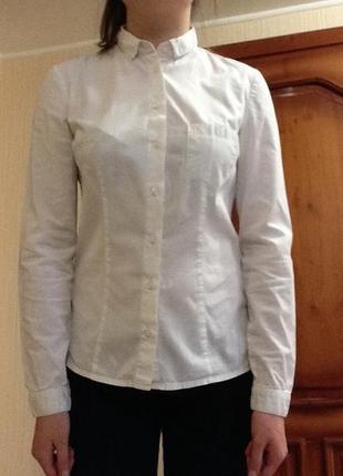 Белоснежная приталенная блуза