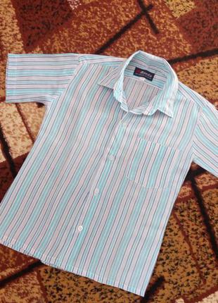 Сорочка, рубашка mazda
