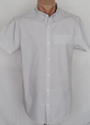 Рубашка белая в черную точку