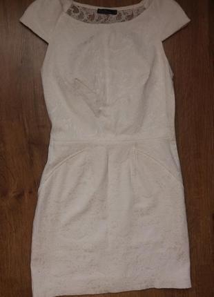 Ніжне плаття kira plastinina