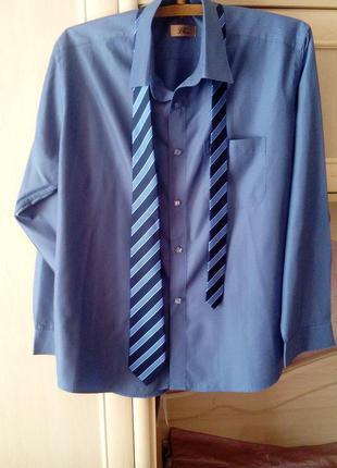 Синяя офисная рубашка по вороту 17,5 см.