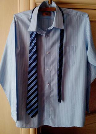 Голубая офисная рубашка, ворот 17 см