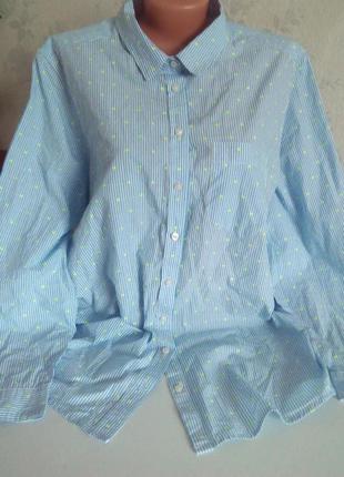 Блуза большой размер m&s