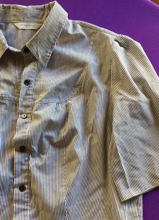 Классическая блуза new look