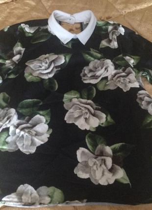 Крутая блуза