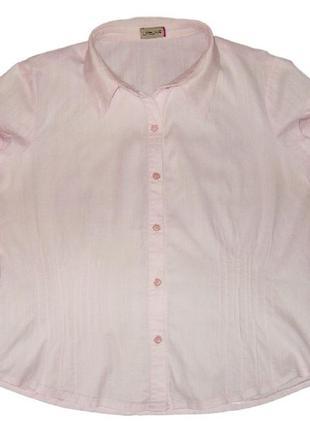 Коттоновая блуза нежно-розового цвета