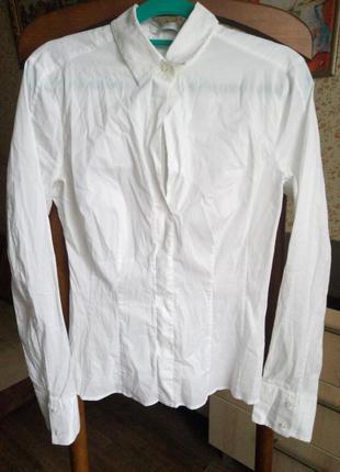 Белая стильная рубашка дорогого бренда hugo boss