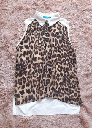 Рубашка тигровый принт