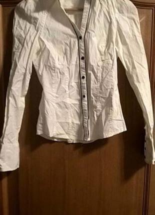 Белая блузка рубашка длинный рукав