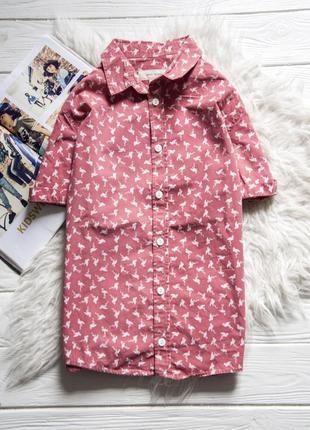 Рубашка от river island  с коротким рукавом