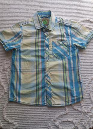 Гооубая рубашка в клетку 128 рост