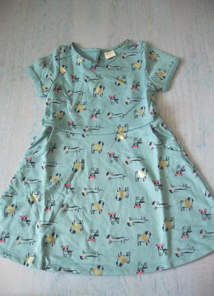 Платье в собачках 4т  джимборри