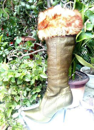 Зимние сапоги на цегейке paolo conte