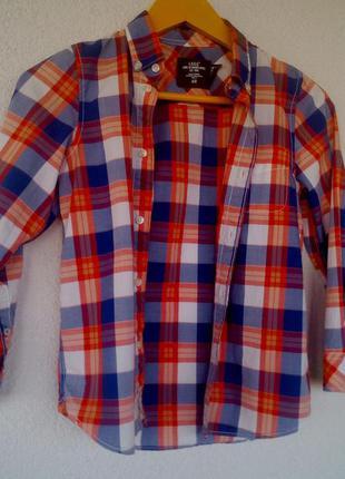 Яркая модная рубашка хлопок