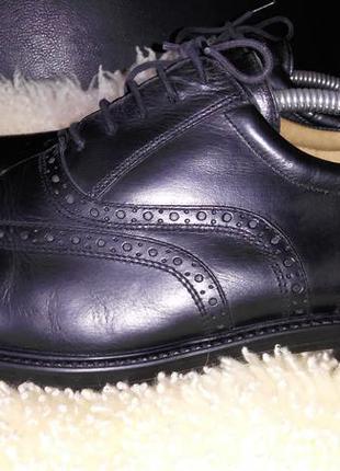 Pierre cardin туфли броги 45 р по ст 29.5 см в хорошем состояние