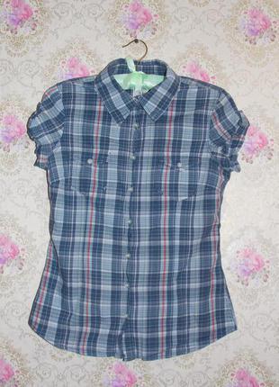 Рубашечка от h&m