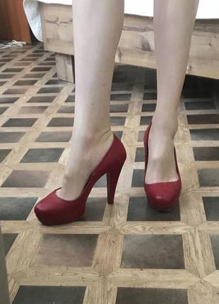 Кожаные туфли fornarina