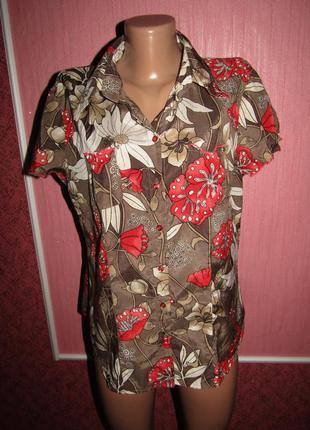 Рубашка блуза р-р хл/14 бренд biaggini