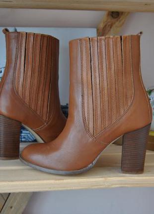 Кожаные ботинки ботильоны челси zign / шкіряні ботильйони