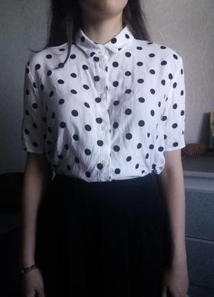 Блуза в горошок от h&m divided