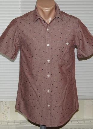 Рубашка серо-розовая в горох