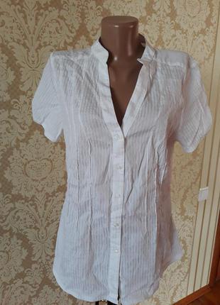 Хлопковая белая блуза рубашка офисная