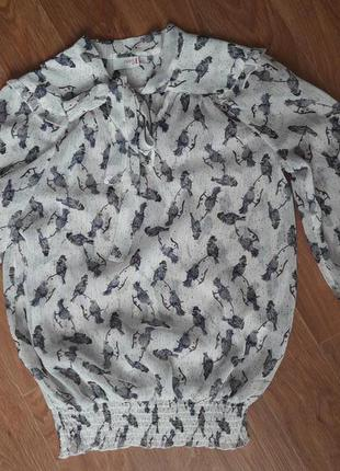 Шифоновая блуза с птичками s