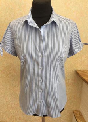 Рубашка блуза в полосочку