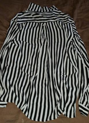 Блуза в полоску zara полцены 50% скидка sale