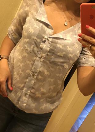 Рубашка, блузка, кофточка mohito, s-m