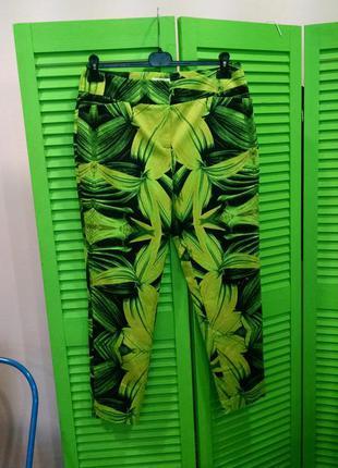 Модные укороченные штаны с ярким принтом cato сша l-xl