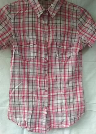 Розовая рубашка на каждый день