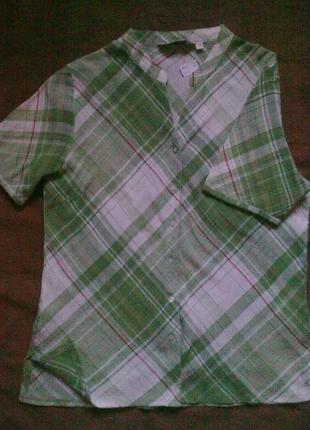 100%хлопок, блуза ewm