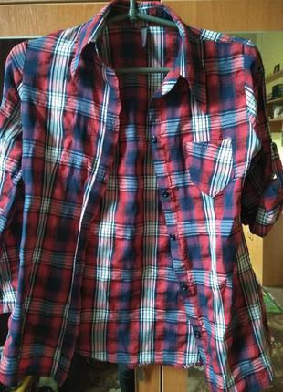 Красная синяя рубашка в клетку