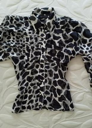 Шикарная блуза бренд, р. s