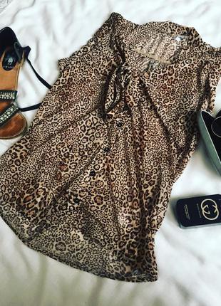 Блуза від new look