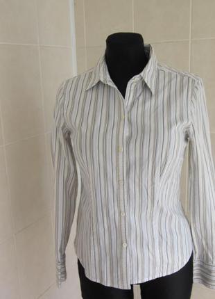 Рубашка от ann taylor