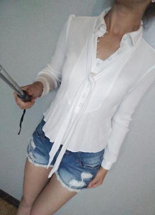 Нежная блуза топ h&m