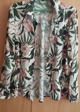 Шикарная блуза zara, актуальный принт