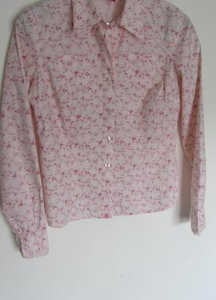 Жіноча блуза s.oliver