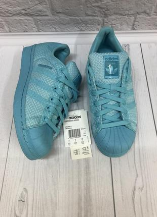 Очень красивого цвета кроссовки adidas superstar