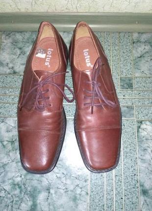 Мужские кожаные туфли lotus