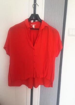 Блузка рубашка от h&m