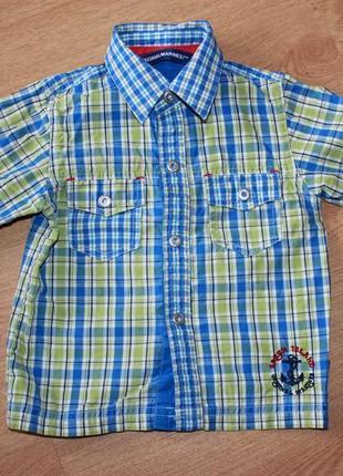 Рубашка сорочка моднячая на кнопках на мальчика 9 мес - 2,5 года хлопок италия