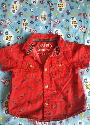 Рубашка для мальчика, цена - 75 грн,  13767200, купить по доступной ... e1ed0fa69e4